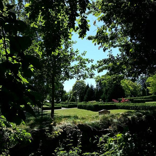 Blick vom Garten von The Raw Kitchen auf den Friedhof der Dorfkirche