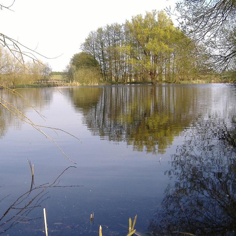 Frühjahr an dem kleinen der beiden Seen in unmittelbarer Nähe von The Raw Kitchen. Dieser See liegt so abgeschieden, dass er nicht mal einen Namen hat. Auch kein Weg führt dort hin!