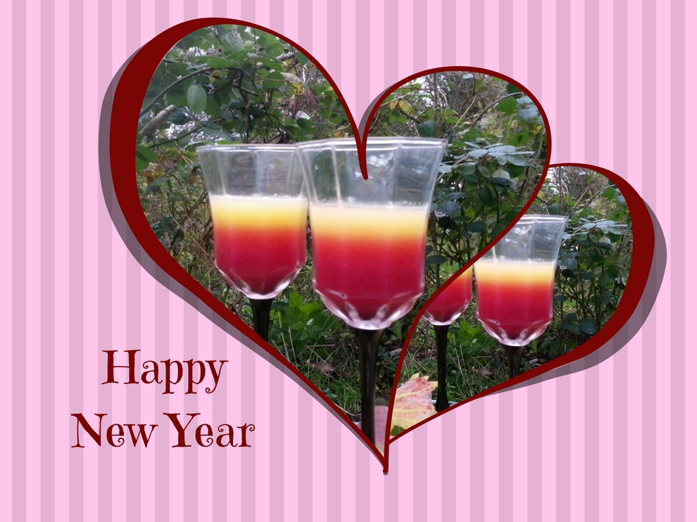 Rohkost-Granatapfel-Juice zu Silvester