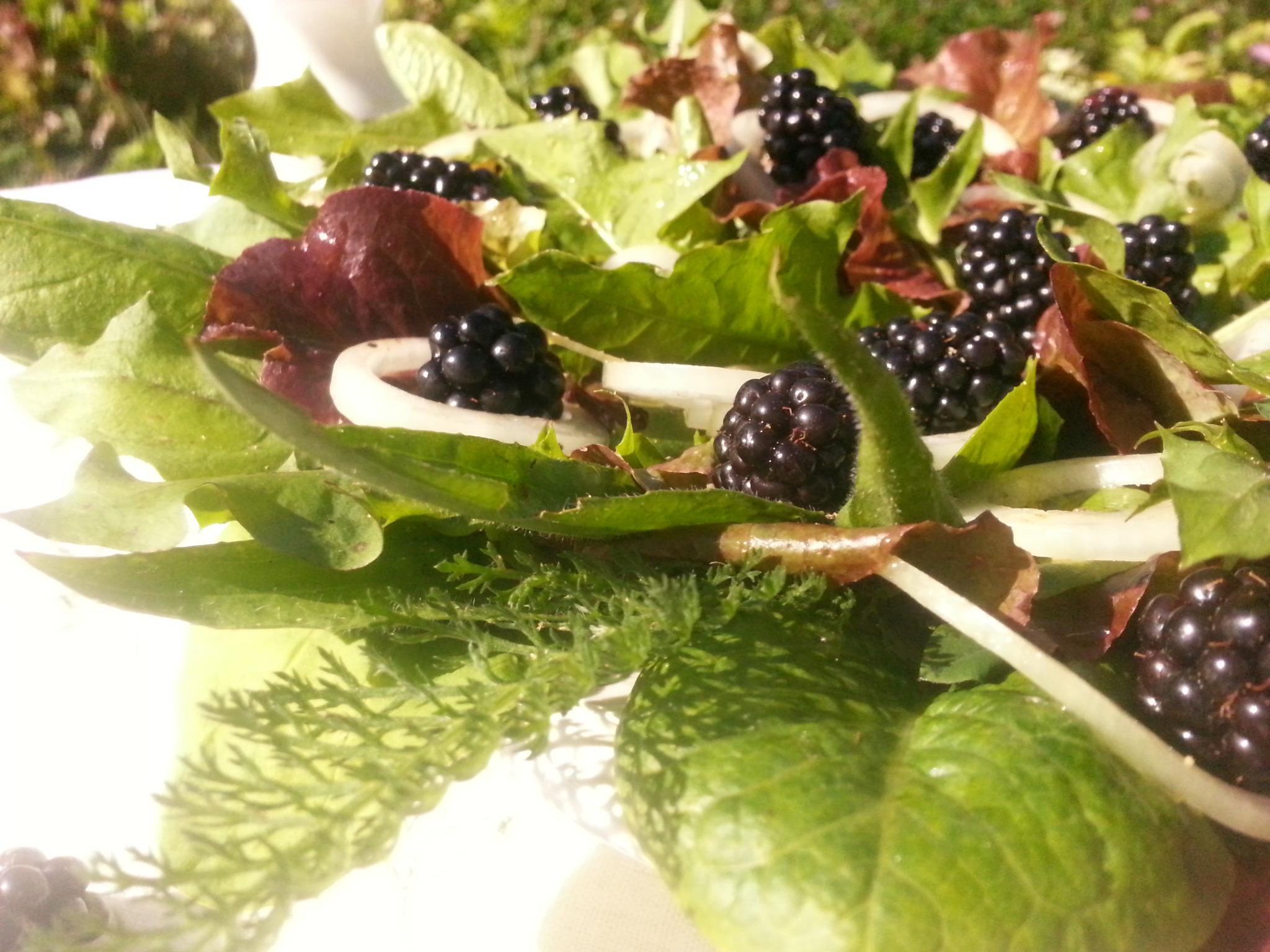 Frischer Rohkostsalat mit Salatblättern, Löwenzahn und anderen Wildkräutern sowie Brombeeren und einer Vinaigrette. Den Link zum Rezept findest du im Text.