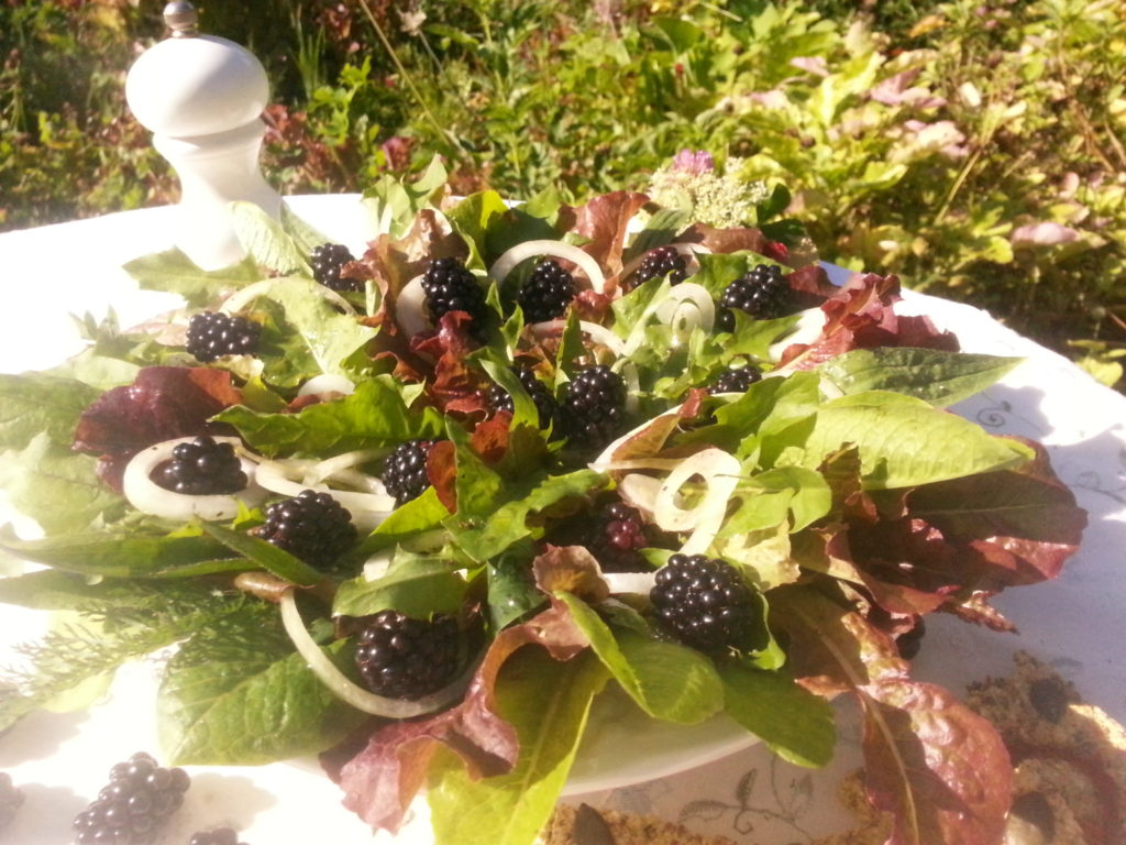 Blattsalat mit Wildkräutern & Brombeeren
