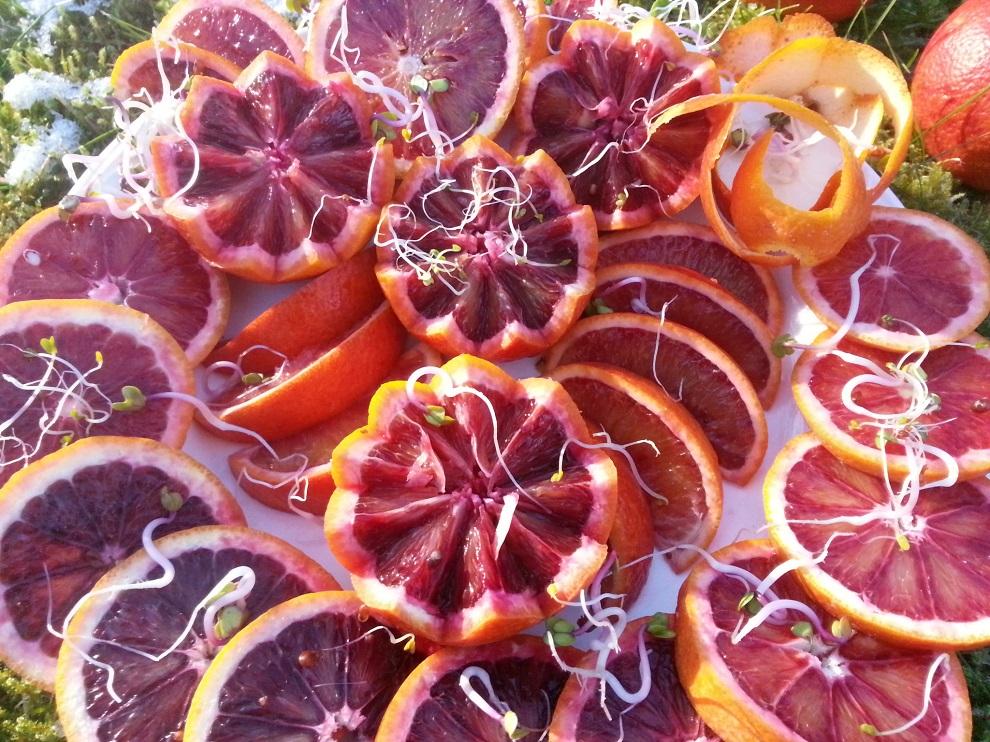 Rot - die Farbe für Herz und Blut - und tatsächlich stärken die roten oder blau-violetten Anthocyane vieler Früchte Herz und Blutgefässe. Und Blutorangen enthalten viele Anthocyane.