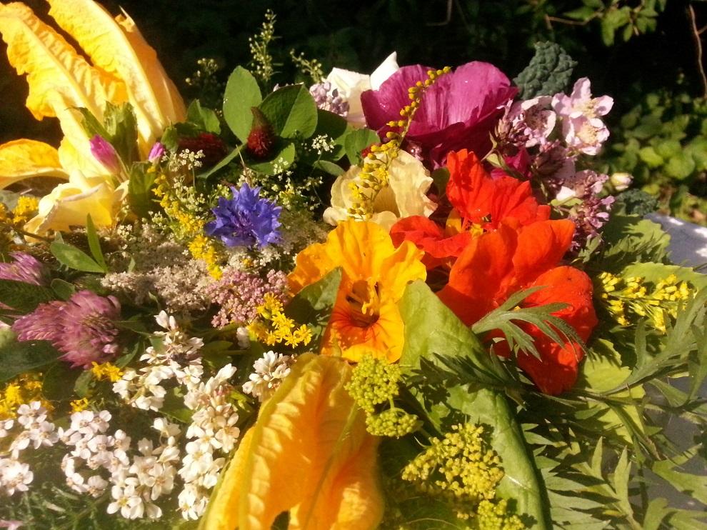 Ein Teller mit essbaren Blüten und Wildkräuterblüten im August - Ist sie nicht wunderbar - diese Vielfalt an Farben und Formen, an Geruch und Geschmack in der Natur?