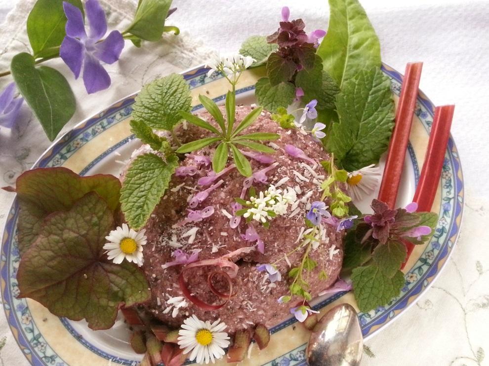 Roh-veganer Rhabarber-Chiapudding - hier serviert mit Rhabarberstengel, Baumspinat, Sauerampfer, Taubnessel, Ehrenpreis, Gänseblümchen und Waldmeister :-)