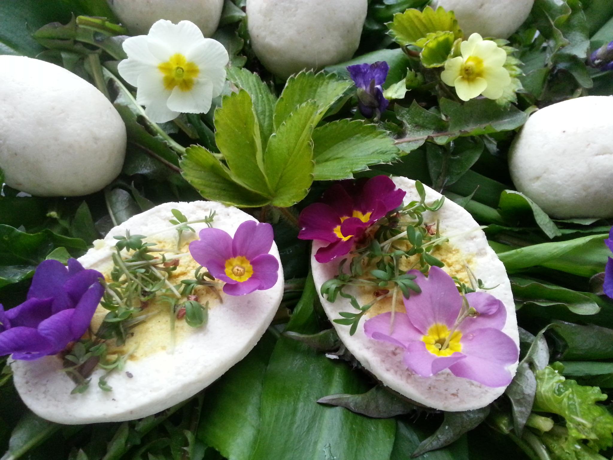 Ostern - grün und bunt - roh-vegane Ostereier