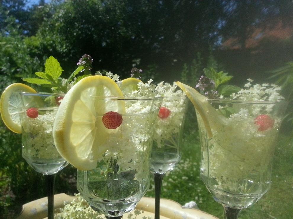 Rohkost-Holunderblüten-Getränk