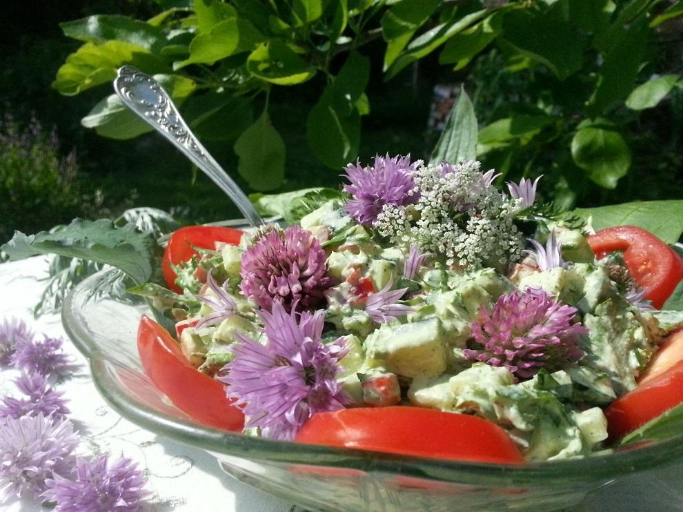 Rohkostsalat mit Gurke und cremigem Hanfdressing. Gierschblüten nicht mit anderen Doldenblütlern verwechseln