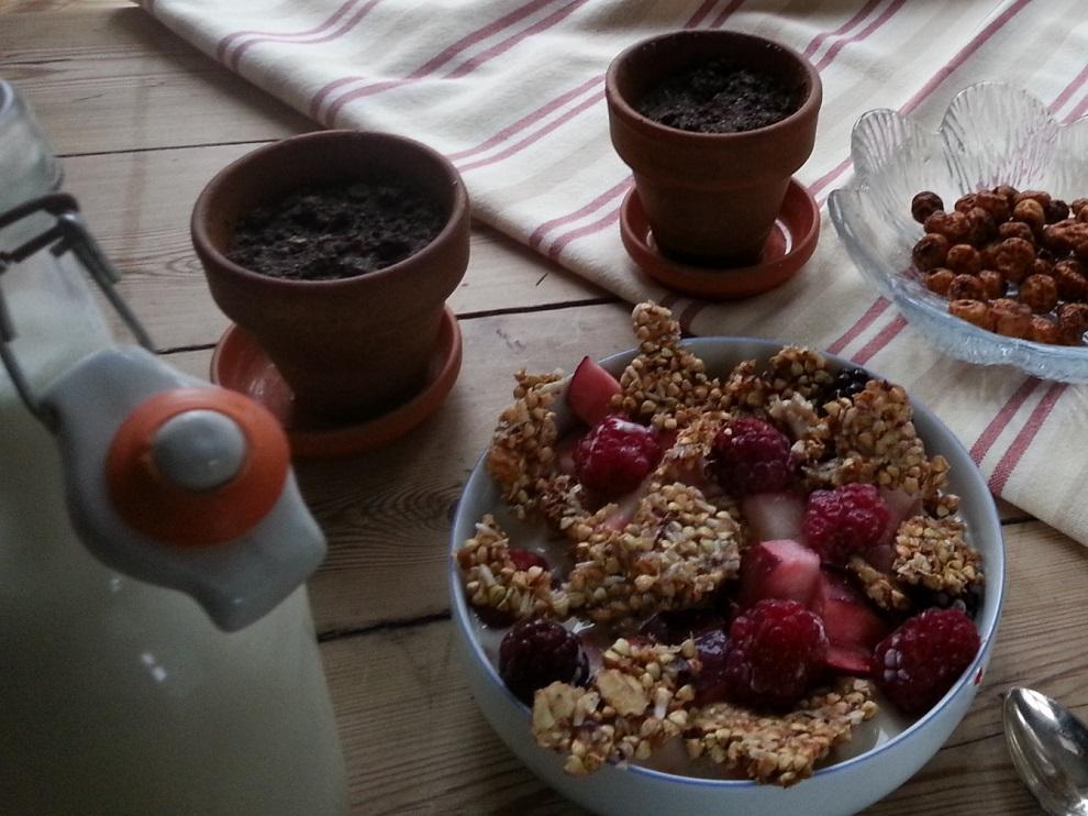 Glutenfreies, roh-veganes Müsli bei Mandelallergie und Nussallergie