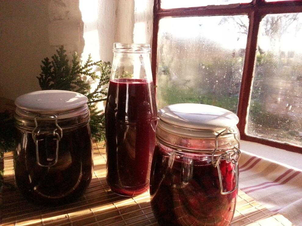 Rote Bete – auf dreierlei Art fermentiert