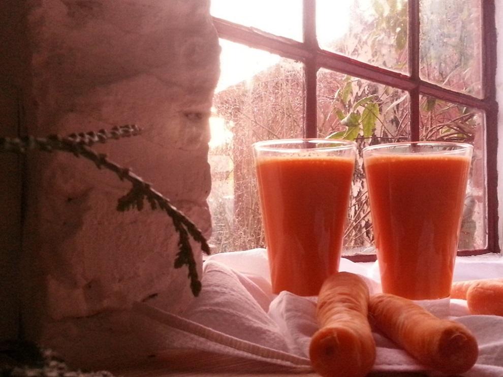 Karotten-Saft