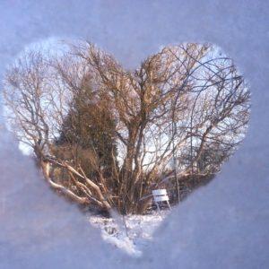 Rohkost im Winter - Was du gegen das Frieren im Winter tun kannst