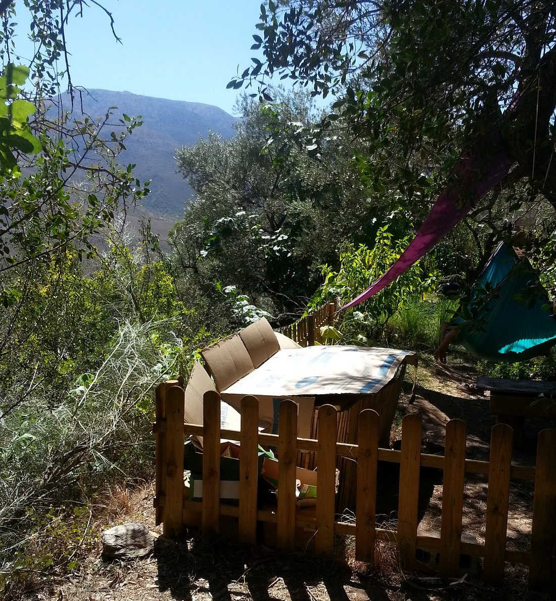 Der Permakultur Design Kurs fand in der Sierra Nevada statt - in den Bergen. Das Gelände war terrassenförmig angelegt. Hier die Wurm-Farm auf der obersten Terrasse ...