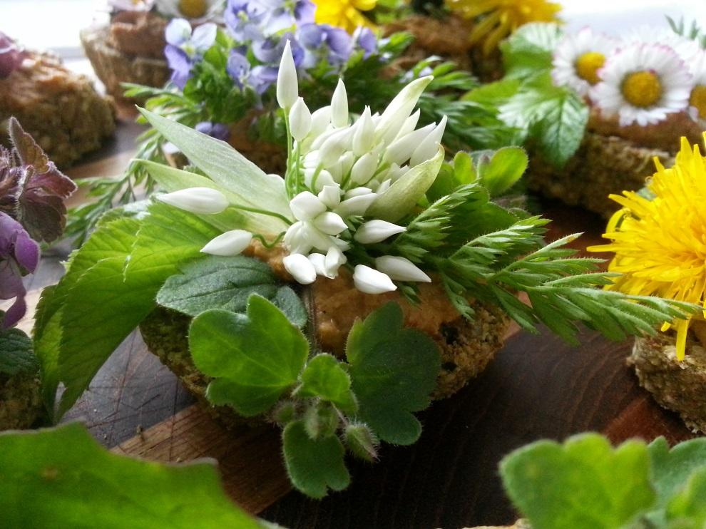 Rohkostbrot mit Linsenmus, Bärlauchblüte, verschiedenen Wildkräutern und Karottengrün