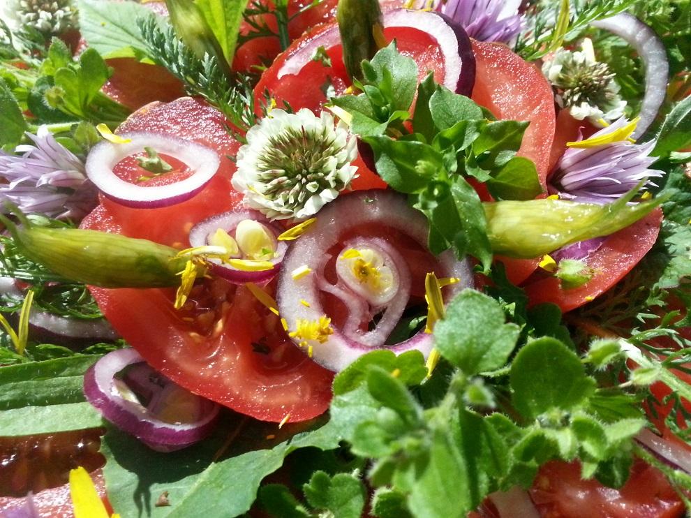 Grün und roh und bunt - wie dieser Blog - ist dieser Tomatensalat mit Wildkräutern :-)