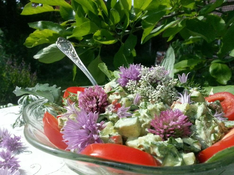 Rohkost-Gurkensalat mit frischen Kräutern