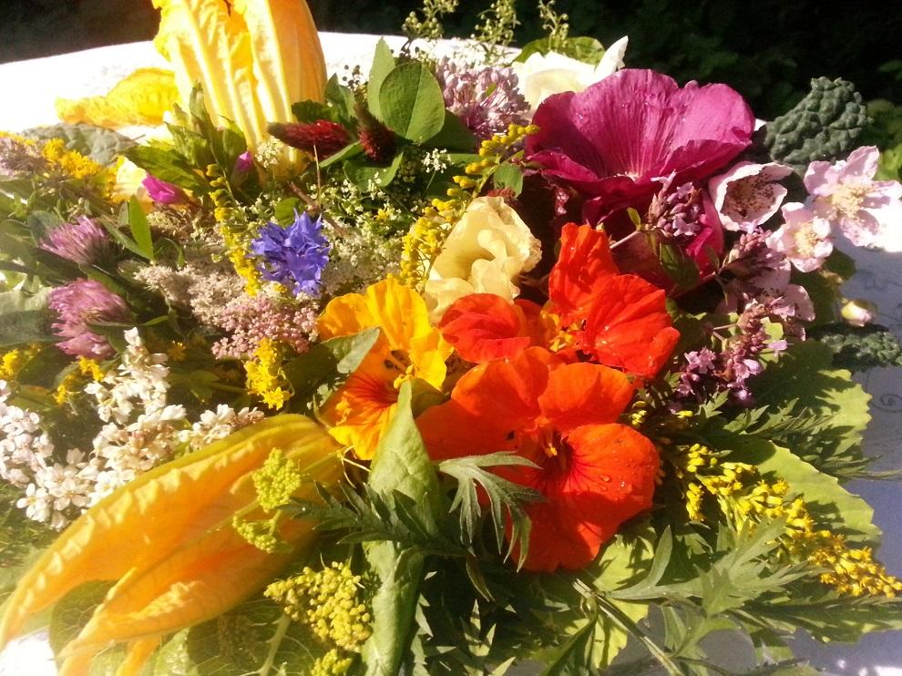 Wildkräuter- und andere essbare Blüten