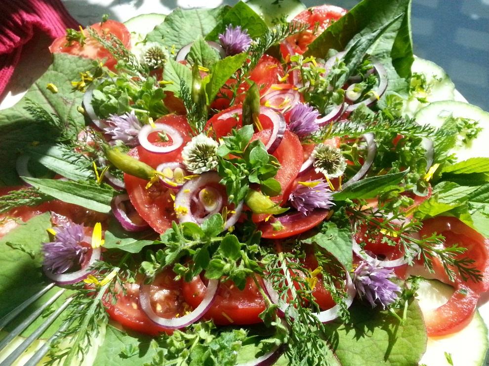 So fröhlich und bunt kann Rohkost sein! Dieser Tomatensalat mit vielen frischen Wildkräutern erfreut Leib und Seele.