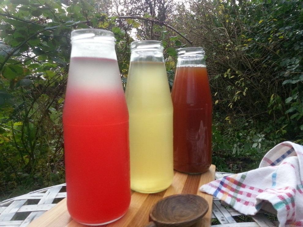 Wasserkefir ist eine natürliche, gesunde Limonade - und unglaublich vielseitig! Hier 3 Variationen, die nach dem Abgießen des ersten Ansatzes fotografiert sind.
