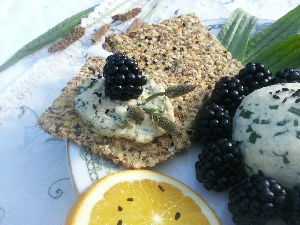 Roh-veganer Spitzwegerich-Cashew-Käse
