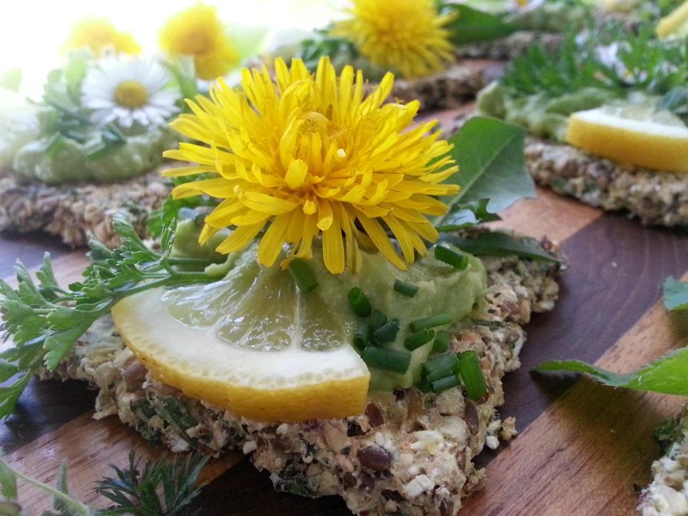 roh-vegane Kräcker Buchweizen Leinsamen glutenfrei